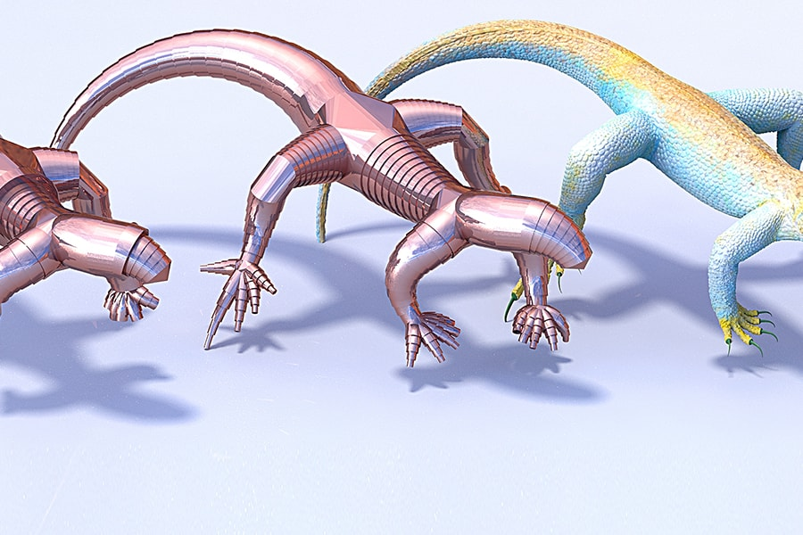 Image of shapes based on lizards.